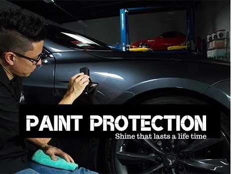 Hope Island paint Protection